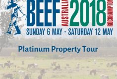 Kaiuroo property tour at Beef Week 2018